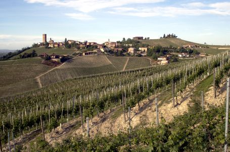 In depth year by year info on Barolo vintages