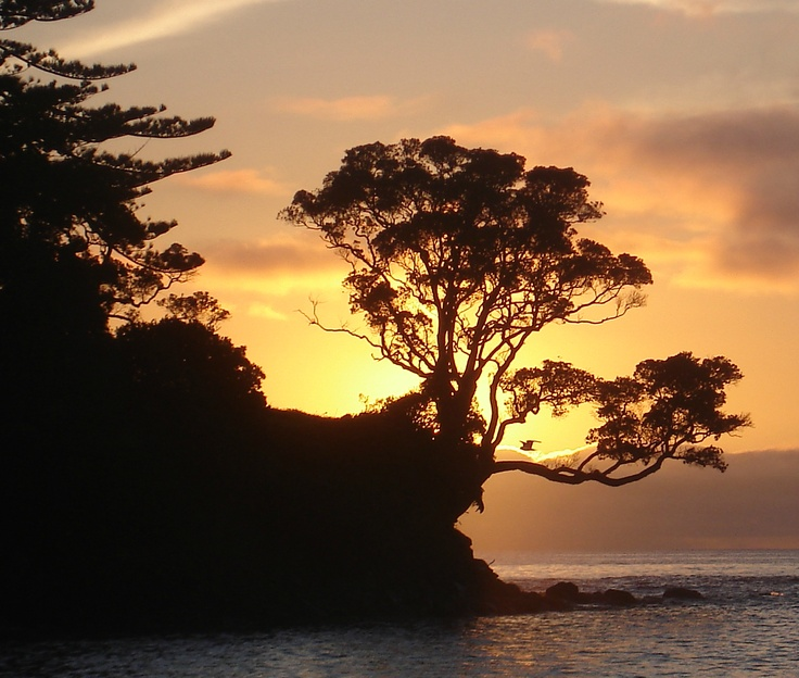Dawn Mathesons Bay NZ 2012