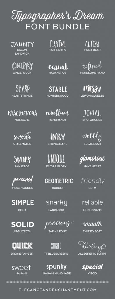 Typographer's Dream Font Bundle