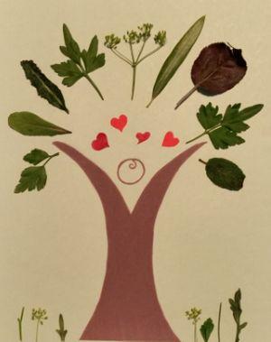 Craving Organic Health Food and Eco Natural Living 0rganic raw honey, quinoa,organic oil,organic apple cider vinegar,organic rice,organic baby food,organic coconut oil,agave, chia seeds,organic personal care,organic coconut sugar,organic coconut flour