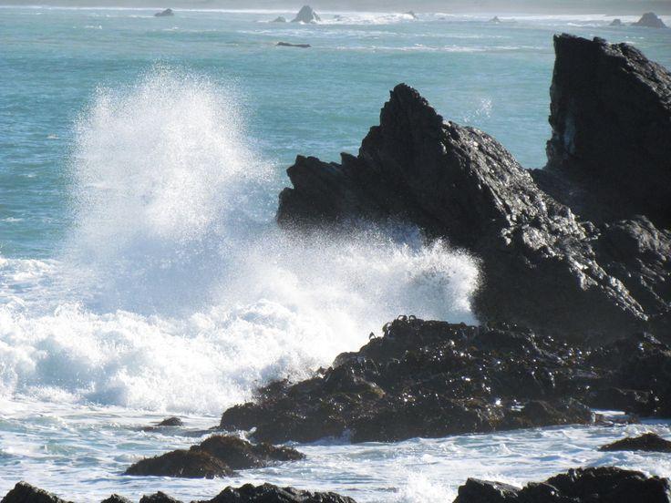 Ngawi NZ