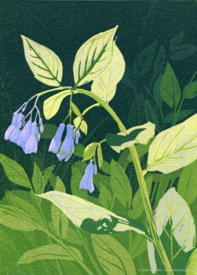 """""""Mertensia"""" linocut -© Sherrie York"""