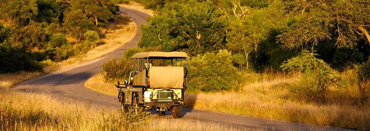 #Explore Kruger National Park on a camping safari. - https://www.afritrip.com/3-day-kruger-camping-safari-oc03/ #afritrip #safari #camping #KrugerNationalPark