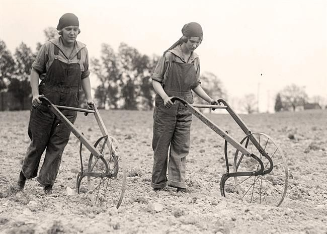 Two charming men plowing