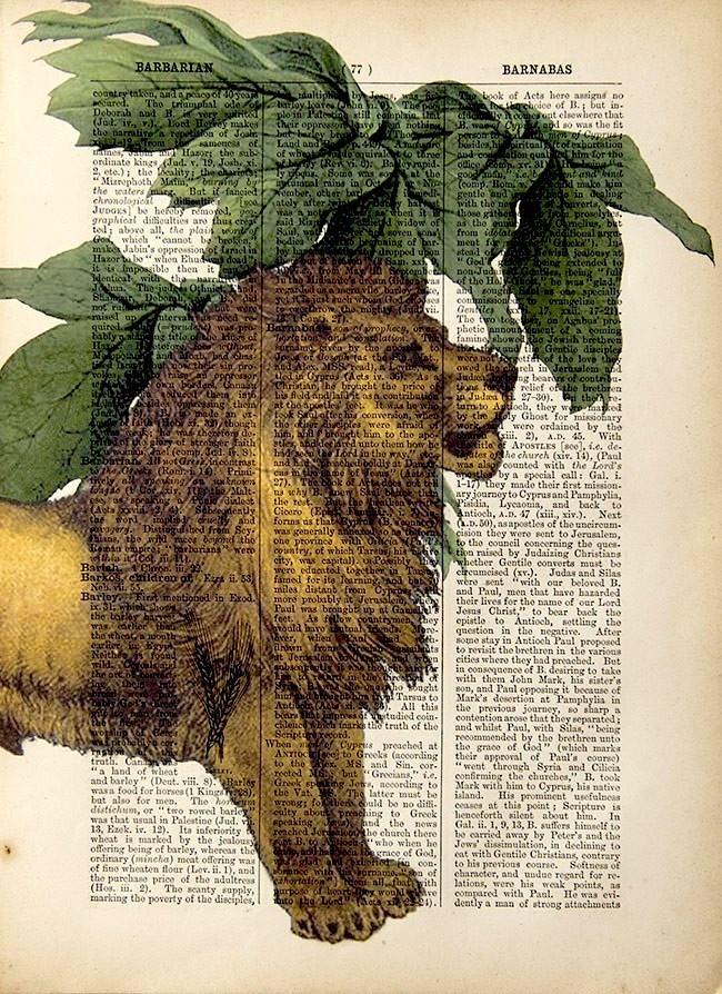 Lion print.
