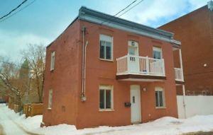 Cottage isolé à vendre dans Hochelaga 3 chambres #28811604 Danielle Lessard courtier immobilier 514-893-2441