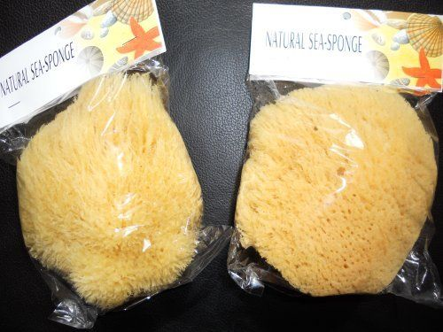 """(FREE SHIPPING) 5""""-6"""" Natural Ocean Real Sea Sponge (Set of 2) by The Sponge Company. $15.99. Soft and absorbent when saturated. Premuim quality natural sea sponge harvested from crystal clear ocean waters. each one is unique in shape and texture. Enjoy an ultimate luxury in bathing.. NATURAL CHOICE:  Sea sponges are one of the most natural and caring ways to cleanse, massage and exfoliate your skin. Sea Sponges are highly absorbent, create a luxurious lather, a..."""