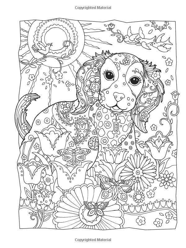 7 best Para colorear images on Pinterest | Coloring books, Colouring ...