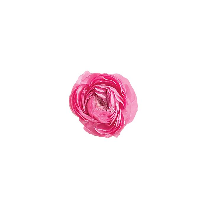 Brides.com: A Glossary of Wedding Flowers by Color. Ranunculus. These blooms have endless layers of teeny-tiny, paper-thin petals. They're exported from all around the world, and they're decently priced.  Browse more ranunculus flower ideas.