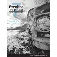 Strokes of Genius 7 - Depth, Dimension, and Space | NorthLightShop.com