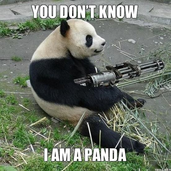 Watch out for this panda