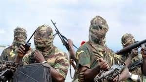 Boko Haram launches fresh attack on Borno village   Suspected members of dreaded Boko Haram terrorists invaded Kwashebe village in Jere Local Government Area of Borno State where they shot and killed about five residents sources have said. Among those dead is a middle-aged person (name withheld) who died at the Jere Divisional Police Headquarters after being evacuated with other four persons who sustained gunshot wounds in their heads the source said. Kwashebe community is in the South East…