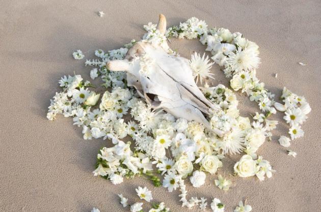 Byron Bridal 9th August - Team Seaside Soiree | WHITE Magazine botanical styling Bower Botanicals, Natalie Holt, Photography Down Bangalow Road.