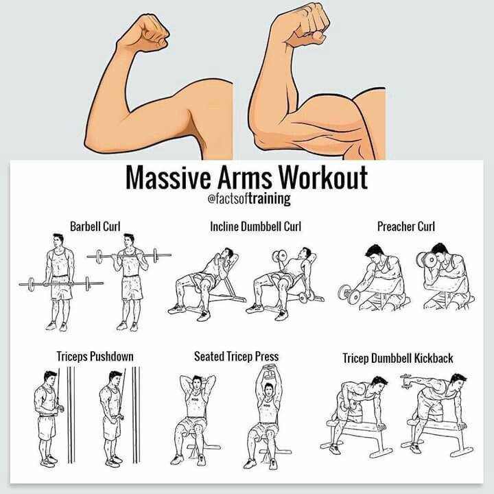 Massive Arms Workout #absworkouts