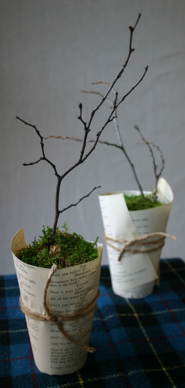 78 ideas about paper cups on pinterest coffee bar party for Recycled flower pots