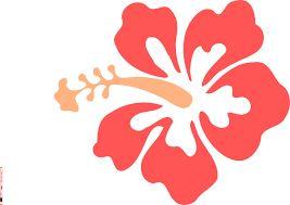 Resultado de imagem para pictures of hawaiian flowers