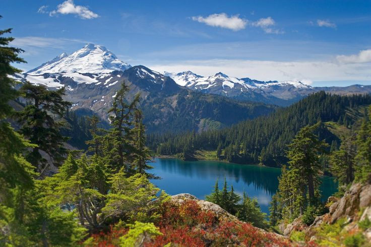 Mountains, lake, trees, fir, sky, view, landscape, nature, beauty vektor