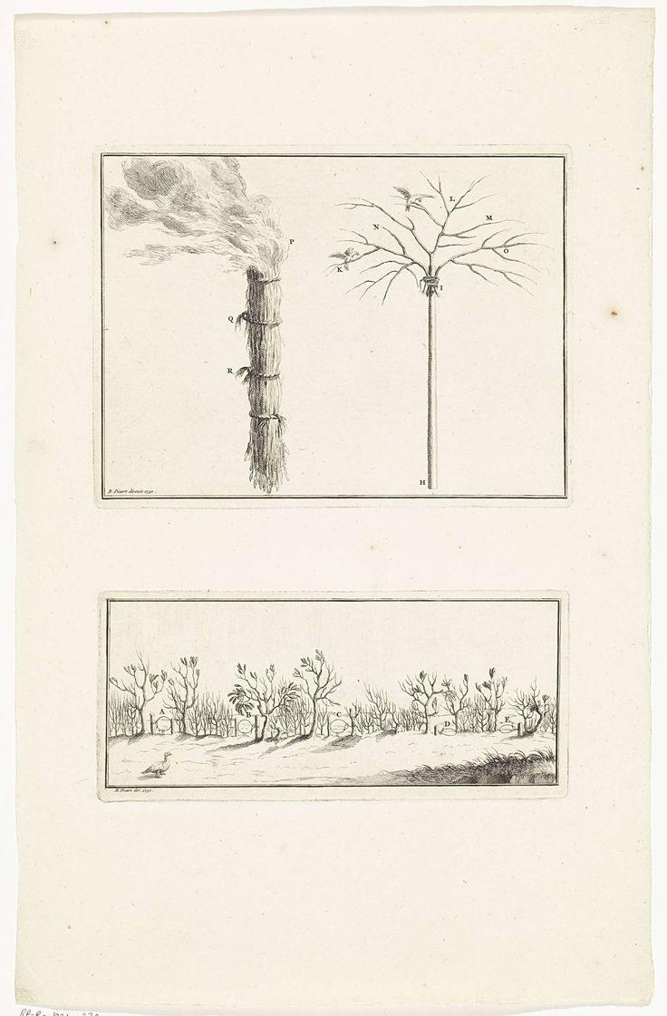 Bernard Picart | Walmende fakkel en constructies om vogels te vangen, Bernard Picart, 1730 | Twee voorstellingen op een blad. Boven: Een brandende bos takken en een zelfgemaakte boom om vogels mee te vangen. Onder: Verschillende strikken tussen de struiken om vogels mee te vangen.