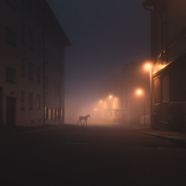 Wild Animals Stalk the Streets of a Small Town in Finland at Night   See many more from this series on Colossal:  http://www.thisiscolossal.com/2013/09/night-animals-mikko-lagerstedt/  www.visitporvoo.fi