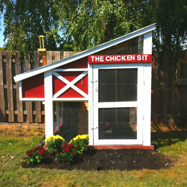Our homemade chicken coop coops pinterest beautiful for Homemade chicken house