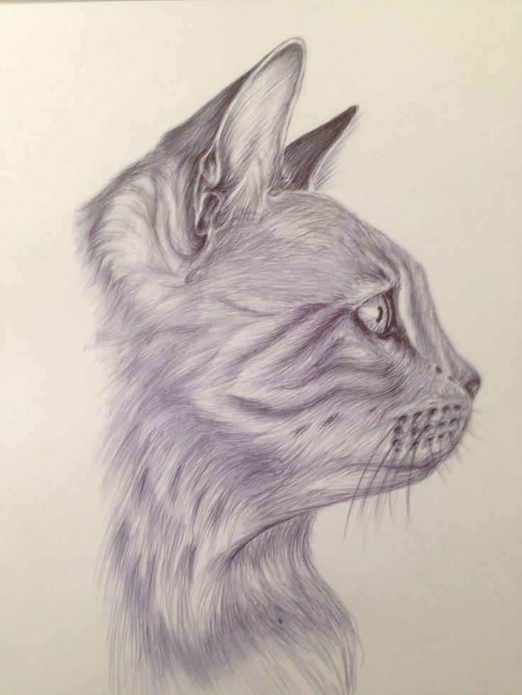 Oltre 25 fantastiche idee su disegno di gatto su pinterest for Disegno gatto facile