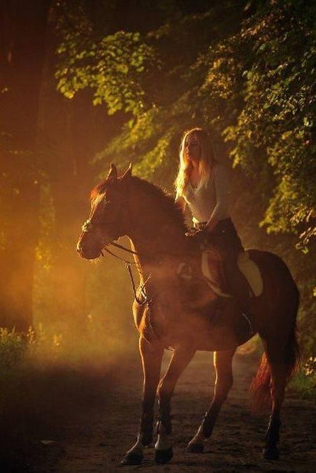 Misty magical moment with lady riding her horse in the sunset glow.
