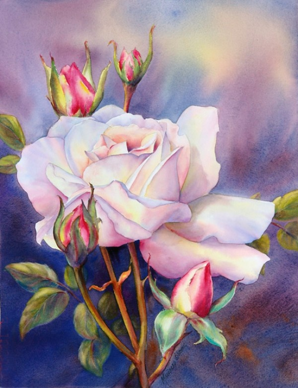 WATER COLOUR ROSE, BY UNKNOWN