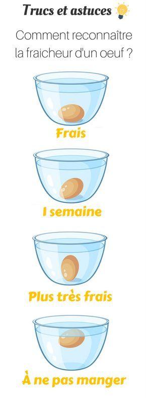 Comment reconnaître la fraicheur d'un oeuf ? #oeuf #poulepondeuse #poule