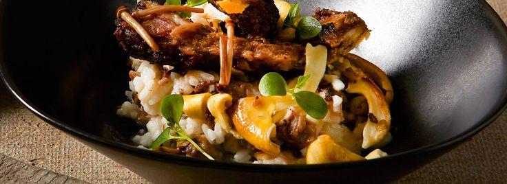 Risotto met eekhoorntjesbrood & spareribs | FoodXperience