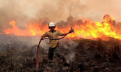 An Indonesian soldier tries to extinguish a forest fire on a peat land at Ogan Komering Ilir in South Sumatra, Indonesia. #saveborneo