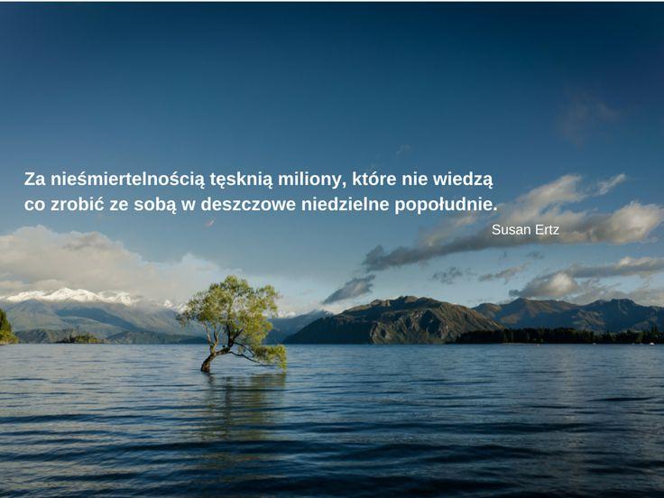 #działanie, #nieśmiertelność, #lifefactory