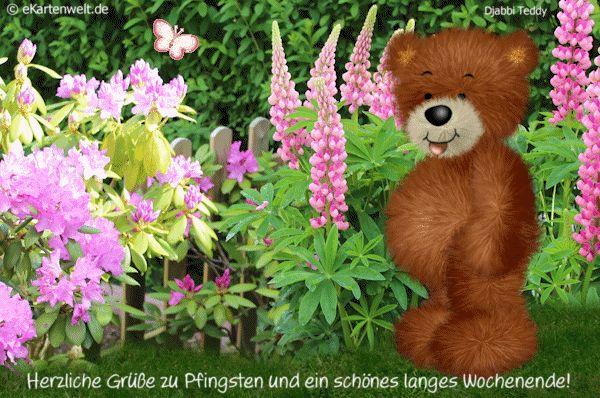 Herzliche Grüße zu Pfingsten und ein schönes langes Wochenende! Animierte Grußkarte mit Djabbi Teddy im Garten