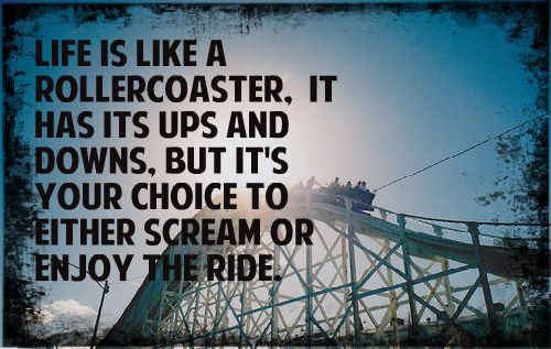Quotes About The Roller Coaster Of Life. QuotesGram
