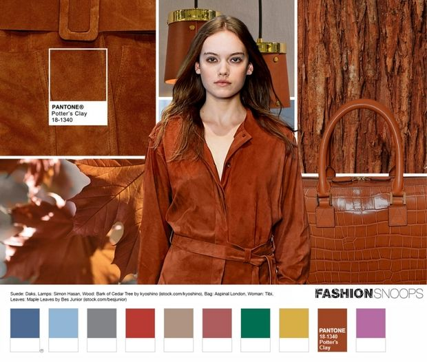 followthecolours.com.br wp-content uploads 2016 03 pantone-fcr-2016-fall-potters-clay-18-1340.jpg