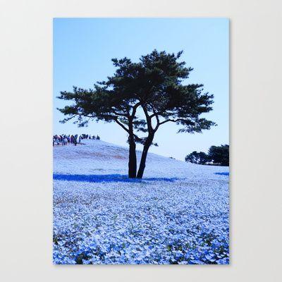 Standing In The Blue World 2014 Canvas Print by Stoneriver - $85.00  #japan #travel #world #nature #flower #blue #tree #nemophila #ibaraki #hitachi #hitachiseasidepark #holiday #present #canvasprint #framedprint #sky