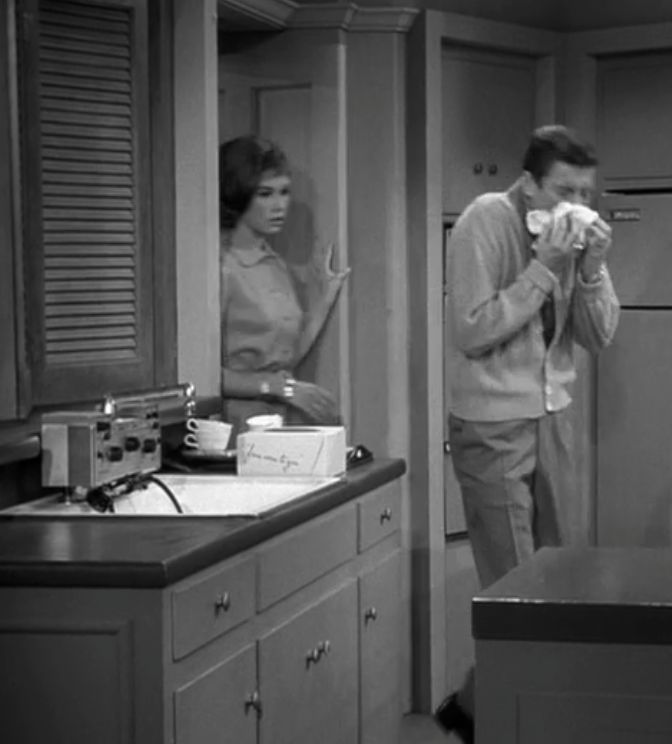 Dick Van Dyke: Kit: Electro Sink Center, Mid Century Modern, Favorite Tv, Dick Vandyke, Vintage, 1963 Electro Sink, Kitchen, Century Ideas, Century Remodel