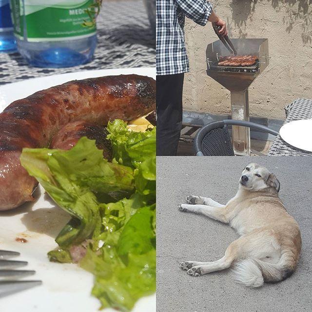 #Sommer, #Sonne, #Wildschweinwürstchen! Da hilft auch kein wehleidiger Hundeblick, Phoebe  Vielen Dank für diesen guten Start in die Woche, Jürgen! #jwk_com #agenturleben #mittagessen #hundeblick #marketing #duft #salat #grill #bbq