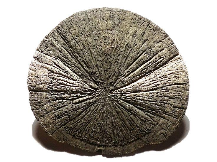 Pyrite, Sparta, Randolph Co., Illinois, USA (185.6g) Mister Minerals (2017)
