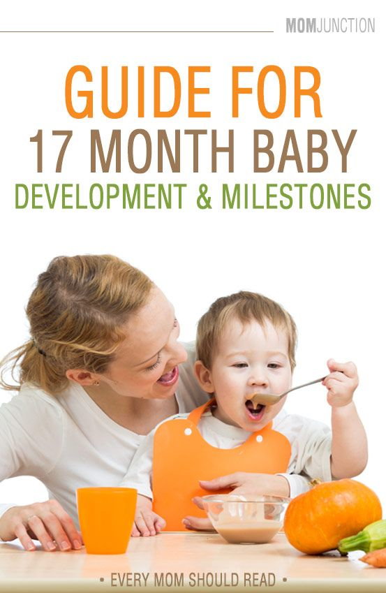 Now is that at 17 months, your baby will try to achieve another hurdle, i.e talking. Read through to know the 17 month old baby development and changes.