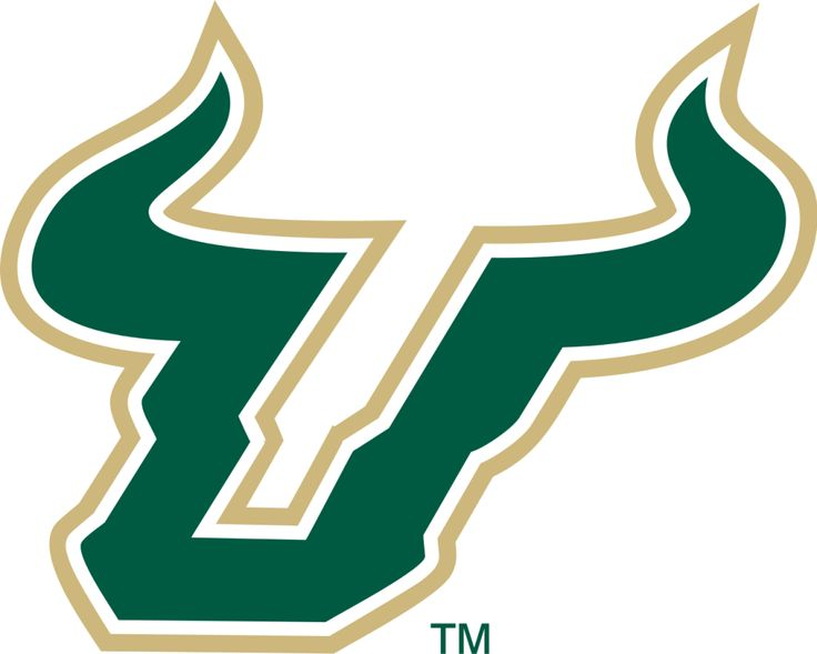 University of South Florida hoping to build on campus football stadium = Since 1997, South Florida has played at Raymond-James Stadium, but now, with other conference teams building their own on-campus facilities, USF's Athletic Director Mark Harlan is looking to join the movement. Harlan, in a.....