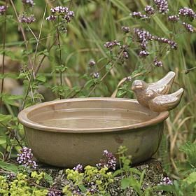 Water Dish with Birds - bird feeder - bird drinker - Providing water is essential for all garden birds, but especially for small garden birds, whose diet consists mainly of seeds and therefore are in the most need of fresh drinking water as it is not naturally present in their diet. It is therefore vital to provide a bird bath or pond in your garden.