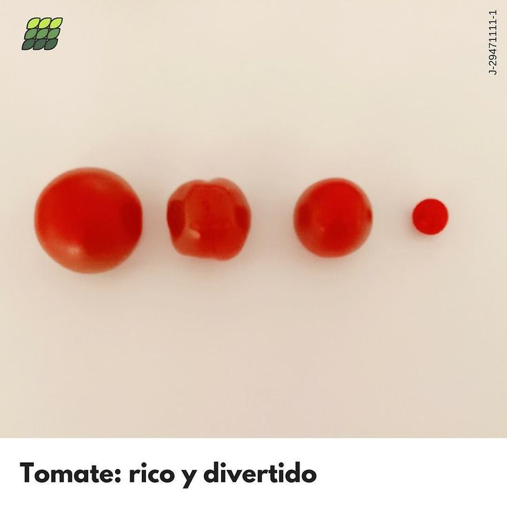 """Cada preparación lleva su jugo. El tomate lleno de tamaños colores y sabores tiene una variedad de propiedades y olores que activan una variedad de sensaciones. Y de ahí parten estas palabras: El Lycopersicon escultelum es el nombre científico del Tomate y sus orígenes se remontan a los bajos Andes y lo cultivaron los Aztecas en México. Los Mexicas o aztecas lo conocían como xïctomatl fruto con ombligo. Debido a esapalabra azteca """"tomatl"""" los conquistadores españoles lo llamaron """"tomate""""…"""