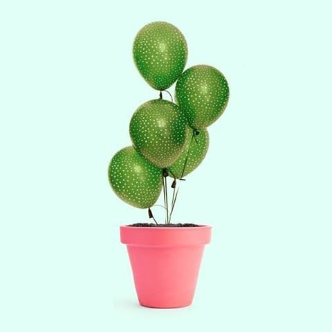 Cactus balloons by Paul Fuentes #design #cactus #balloons #plants