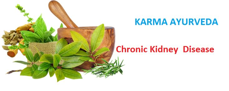 #Kidney failure #treatment in #Ayurveda  karma Ayurveda provides a very effective Ayurvedic treatment of kidney disease under the supervision of Dr Puneet Dhawan. Check out more details here: http://bit.ly/karma111
