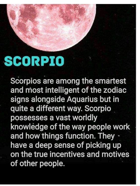 Scorpio | scorpio | Scorpio zodiac facts, Zodiac signs scorpio