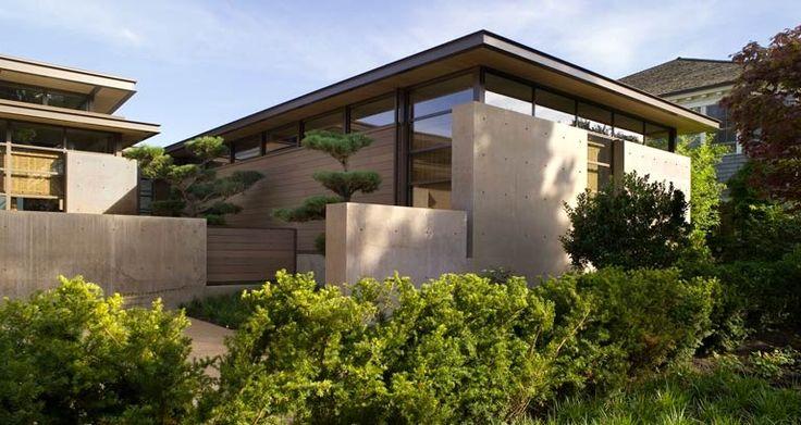 Сосна черная | allworth дизайн • ландшафтные архитекторы