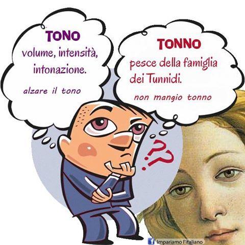 tono/tonno