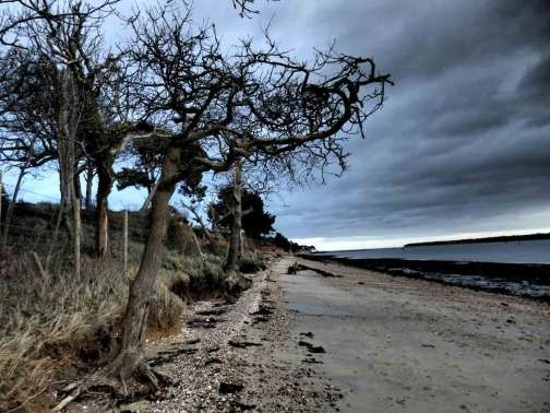 Walk with me (to the estuary) | freaky folk tales (a ghost story)