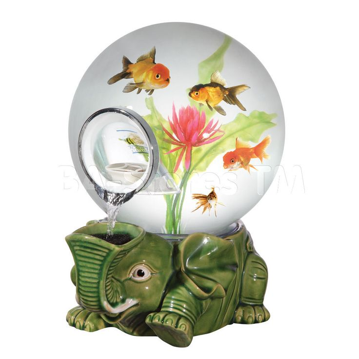 Lucky Elephant Globe Aquarium