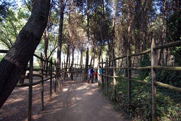 zoo de guadalajara y su accesibilidad
